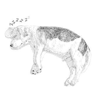 Zeichnung des entzückenden spürhunds schlafend auf weißem hintergrund