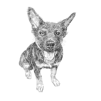 Zeichnung des schwarzen hundes sitzend auf weißem hintergrund.