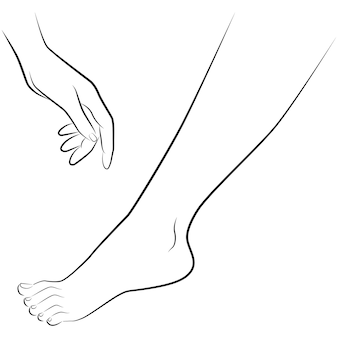 Zeichnung von hand und fuß eines mannes isoliert auf weißem hintergrund, vektor