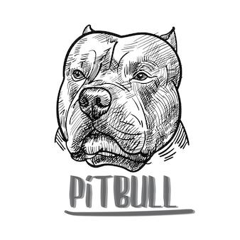 Zeichnung von pitbull kopf auf weißem hintergrund