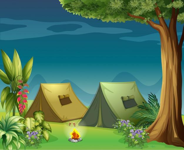 Zelte im dschungel
