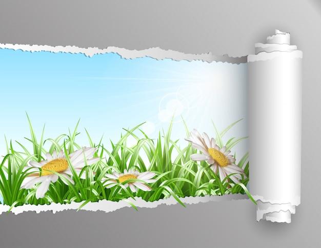 Zerrissenes papier mit sommerhintergrund.