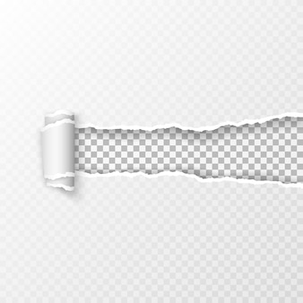 Zerrissenes transparentes kariertes blatt papier