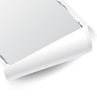Zerrissenes weißes papier
