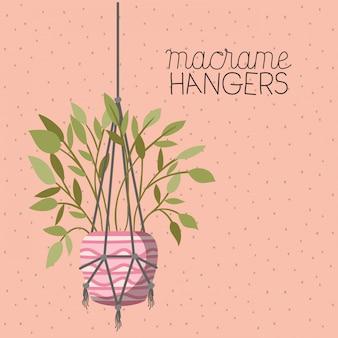 Zimmerpflanze in makramee kleiderbügeln