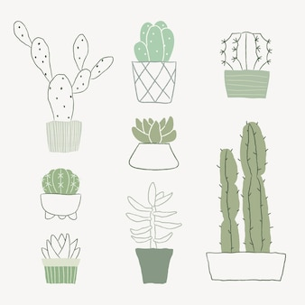 Zimmerpflanze kaktus vektor doodle set