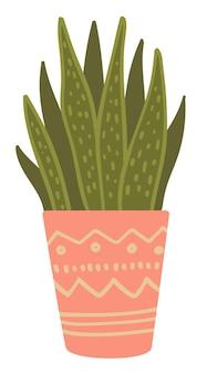 Zimmerpflanze wächst im topf, isolierte ikone der dekorativen floristischen komposition. topfpflanze mit ornamenten am behälter. home- oder office-design. flora und botanische biodiversität, vektor im flachen stil
