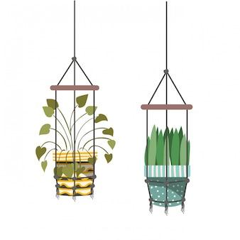 Zimmerpflanzen auf makramee kleiderbügel symbol