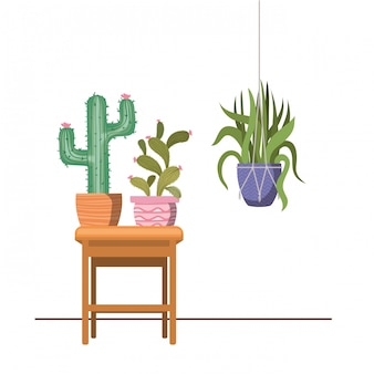 Zimmerpflanzen auf makramee kleiderbügeln und tisch