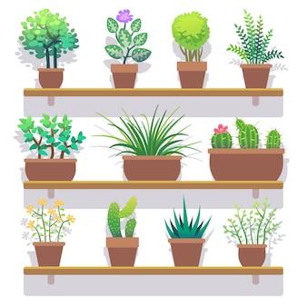 Zimmerpflanzen in den flachen ikonen der töpfe eingestellt