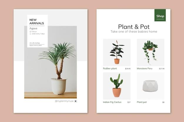 Zimmerpflanzen-poster-vorlagen-vektor-set für indoor-gartenarbeit