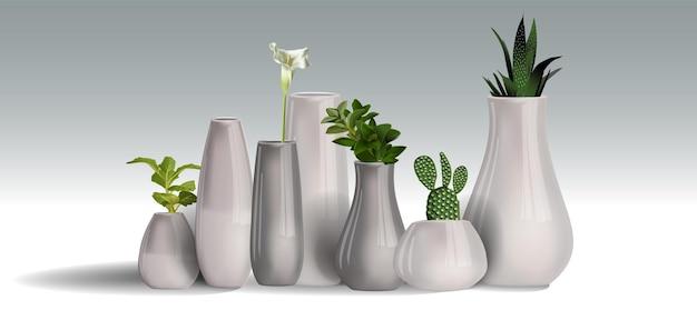 Zimmerpflanzen realistische weiße wandinnenillustration