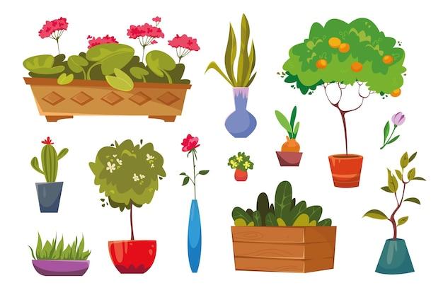 Zimmerpflanzen und blumen für die innendekoration flache ikonensammlung. home topfpflanze und baumpflanzen mit blumen und blättern. vektorillustration im flachen stil. isolierte cliparts auf weißem hintergrund