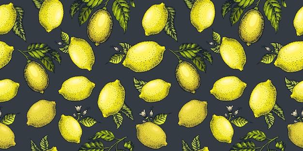 Zitrone nahtlos, muster