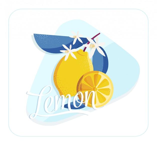 Zitronen-design-element