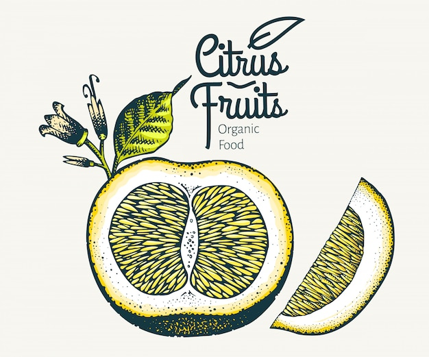 Zitronenfrüchte