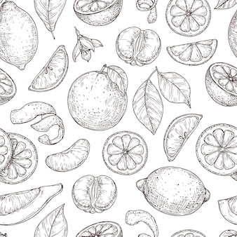 Zitrus-skizzenmuster. natürliche zitronen-orangen-blätter, limetten-früchte-hintergrund. botanischer zweig der weinlese, nahtlose beschaffenheit des exotischen pflanzenvektors. fruchtzitrone gesundes, botanisches essen zitrusmuster