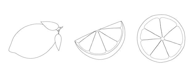 Zitruszitrone ganze scheibe set lineares skizzengekritzel