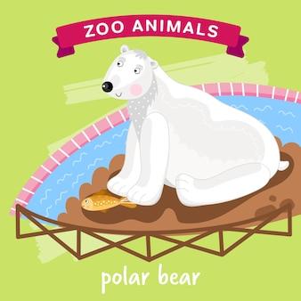 Zootier, eisbär