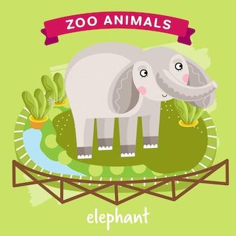 Zootier, elefant