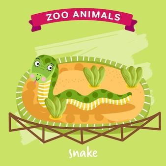 Zootier, schlange