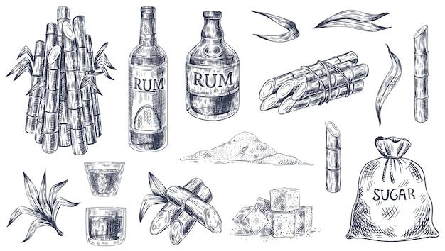 Zuckerrohr sketchs set
