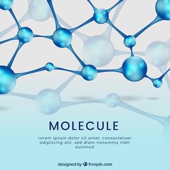 Zusammenfassung hintergrund der moleküle