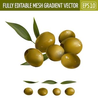 Zusammensetzung der grünen oliven mit den auf weiß isolierten blättern.