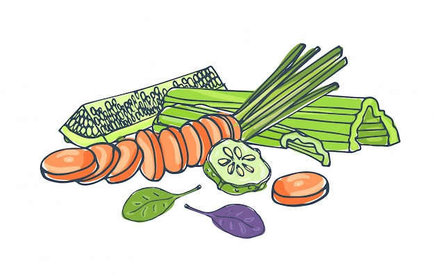 Zusammensetzung mit frischem leckerem gemüse, das zusammen lokalisiert auf weißem hintergrund liegt - gurke, sellerie, karotte, basilikumblätter. gesundes vegetarisches essen. bunte hand gezeichnete illustration.