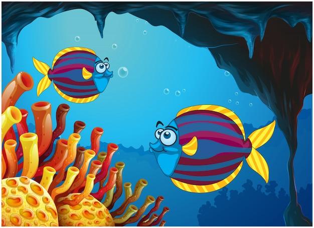Zwei bunte fische innerhalb der höhle unter dem meer