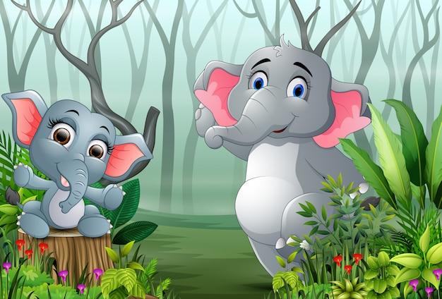 Zwei elefanten im wald mit trockenen baumasten