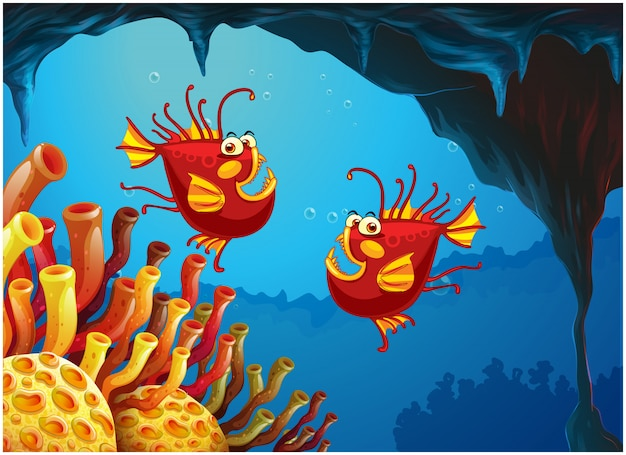 Zwei fische unter dem meer nahe den korallenriffen