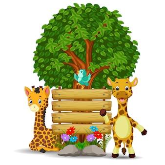 Zwei girafe und vogel vor einem leeren hölzernen schild