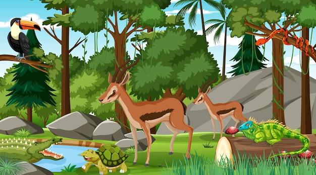 Zwei impala mit anderen wilden tieren im wald tagsüber szene