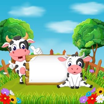 Zwei kuh im garten mit leerem papier