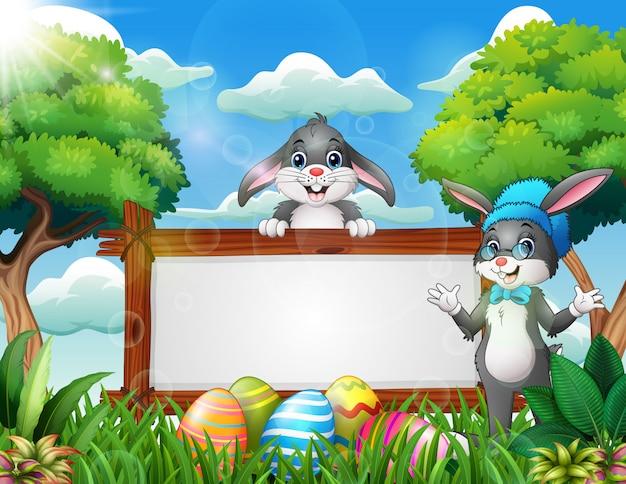 Zwei nette kaninchen nahe dem leeren zeichen und den ostereiern