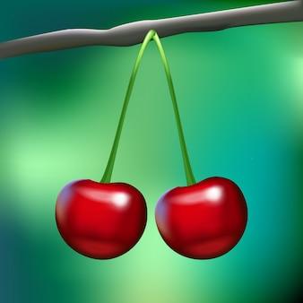 Zwei realistische glänzende kirschen auf einer niederlassung