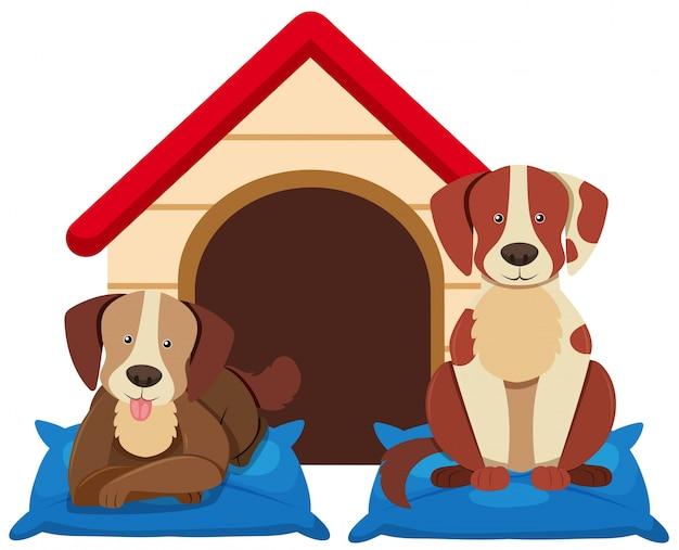 Zwei süße hunde durch die hundehütte