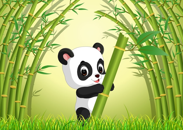 Zwei süße panda in einem bambuswald