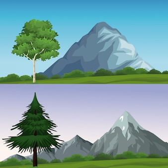 Zwei verschiedene naturlandschaften