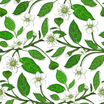 Zweige mit nahtlosem musterhintergrund der weißen blumen.