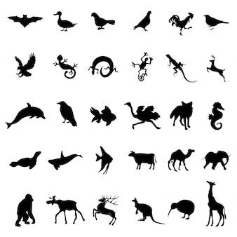 30 silhuetas de répteis de aves animais