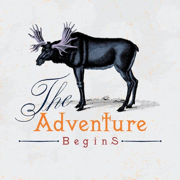 A aventura começa logo design vector