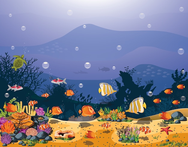 A beleza do peixe submarino