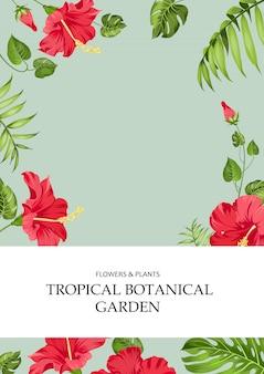A capa do livro.