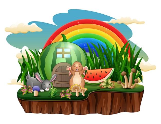 A casa de melancia com coelhos