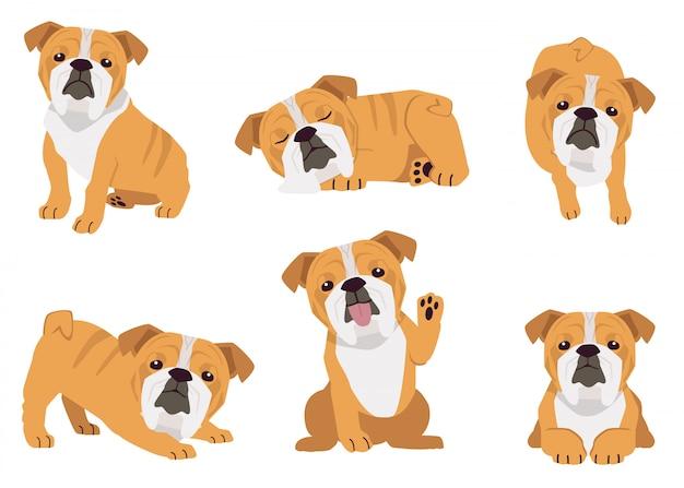 A coleção de cachorro touro em muitas ações. ilustração