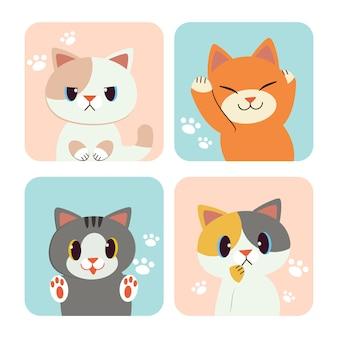 A coleção de gato no quadro. muitos cara de gato no quadro