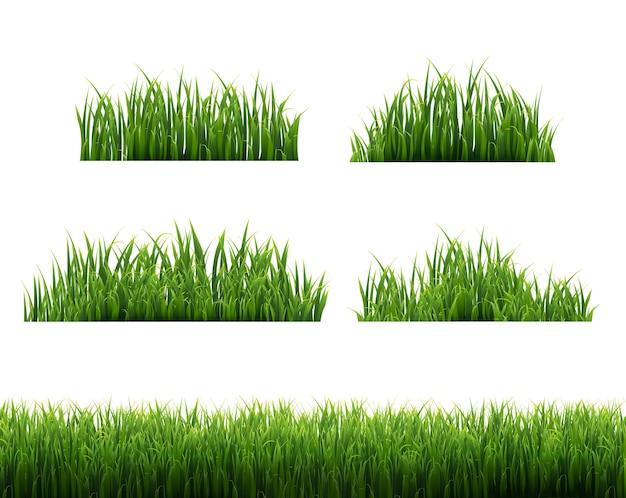 A grama verde molda o fundo branco, ilustração vetorial