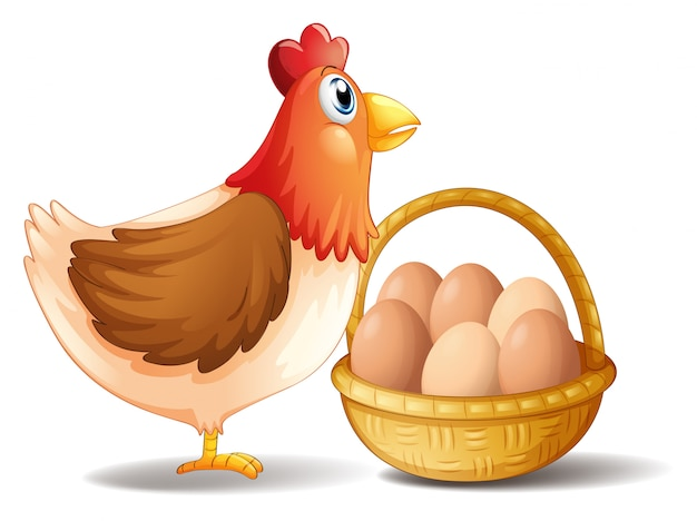 A mãe galinha e uma cesta de ovos